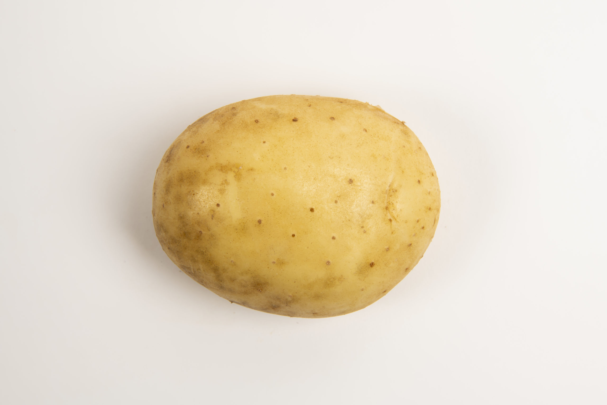 Lady Rosetta Potato
